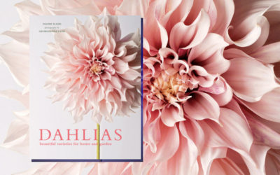 Dahlias: Beautiful Varieties for Home & Garden