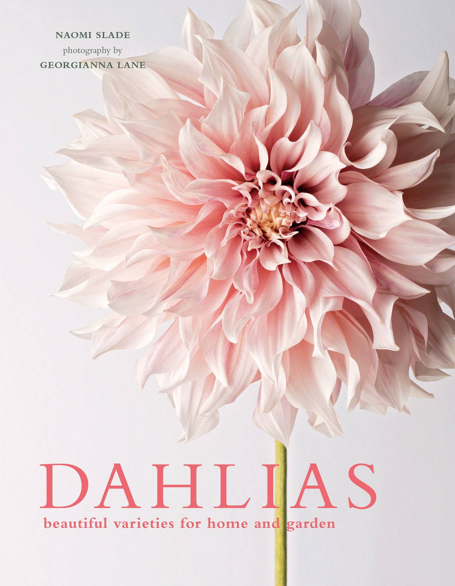 Dahlias-Cover-02