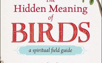 The Hidden Meaning of Birds–A Spiritual Field Guide: Explore the Symbology and Significance of These Divine Winged Messengers