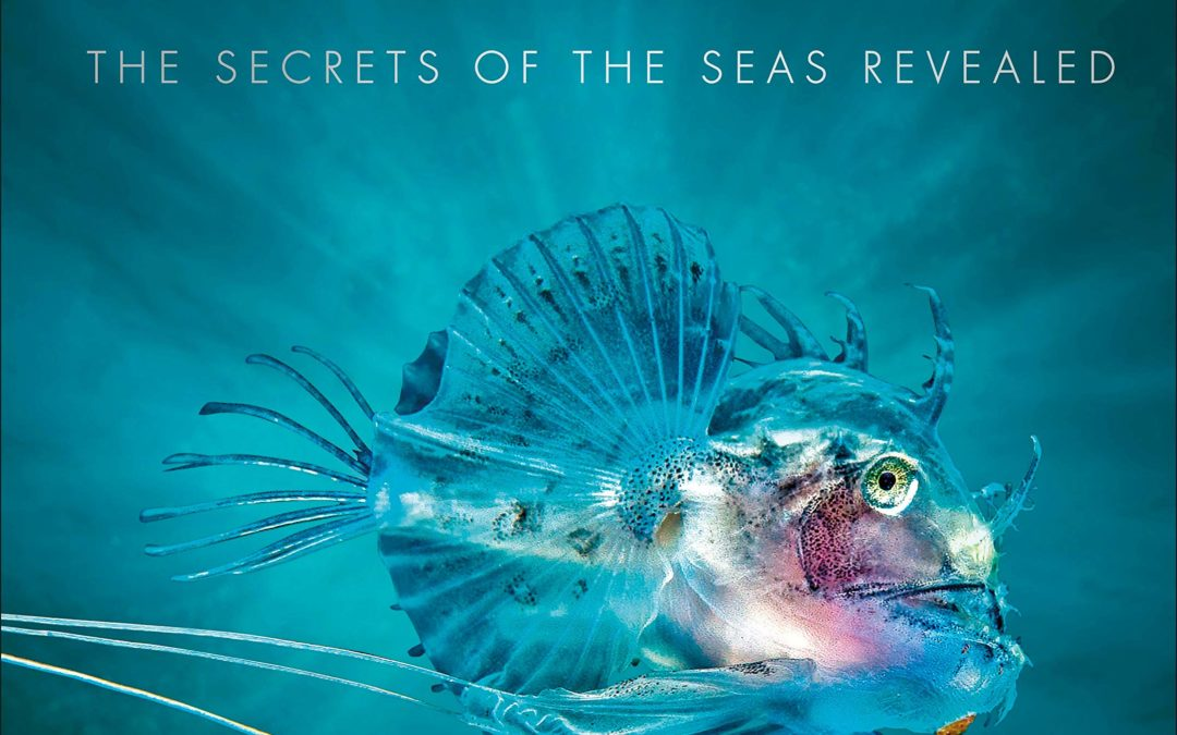 Oceanology: The Secrets of the Sea Revealed